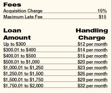 Advance Financial auto equity loan fees