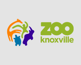 Advance Financial Volunteerism in 2018: Knoxville Zoo Super Hero Saturday
